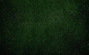 Plain-Green-Grass-background – 4Season ...