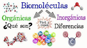 Resultado de imagen de Moléculas inorgánicas