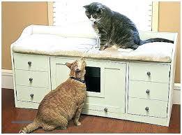 Decorative Cat Litter Box hidden litter box furniture juniorderbyme 81
