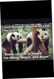 Quotes About Pandas Best Pandaswhy The R Endangered Funny Pinterest Panda Animal