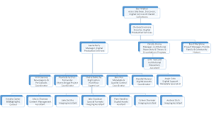 Ut Austin Organizational Chart Digital Support Services George A Smathers Libraries