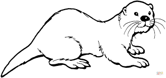 Small Picture Baby Sea Otters Coloring Coloring Coloring Pages