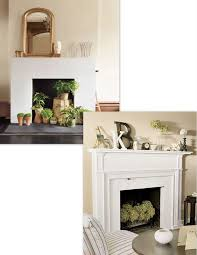 plants for decoration in the fireplace