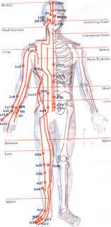 the 12 meridians healing qigong Meridian Lines Body Map meridian flow chart meridian lines body map