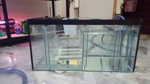 Freshwater Sump Design 20 Gallon Diy Sump Test For Freshwater Tank Youtube