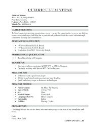 Standard Cv Template – Rigaud