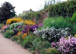Small Picture herbaceous border 2jpg homepage HORNBY GARDEN DESIGNS