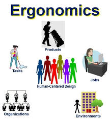 Ergonomics In Product Design What Is Ergonomics Definition And Meaning Market Business