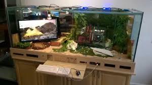 gaming pc reptile tank i7 pc built into desk gaming mix tank lizard pc you