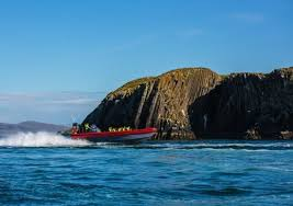 Iceland Ocean Tours   Iceland, Boat tours, Tours