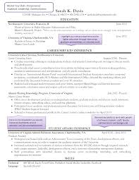 Professional Resume Critique Higher Education Resume Templates At