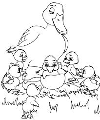 Coloriages Canard Les Animaux Page 2