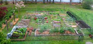 Small Picture 100 Raised Vegetable Bed Designs Amazon Com Gardens To Gro