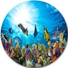 Barrier Reef Coat Rack Coral Reef Wall Art Wayfair 90