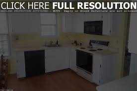 Brands Of Kitchen Cabinets Kitchen Cabinets Brands Comparison Kitchen Design Design Porter