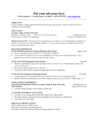 Free Resume Templates Standard Sample Download International
