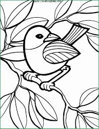Bird Coloring Pages For Adults Elegant Hard Peacock Book Zen Disney