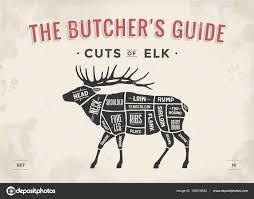 Deer Meat Chart Elk Meat Cuts Chart Cut Meat Set Poster Butcher Diagram