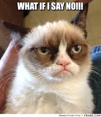 Grumpy Cat Memes Saying No - grumpy cat meme saying no , Meme ... via Relatably.com