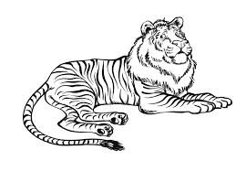 S Dessin Coloriage Lion Et Tigre L