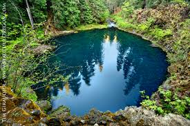 tamolitch blue pool. Tamolitch, Blue Pool, McKenzie River, Willamette National Forest, Lane County, Oregon Tamolitch Pool