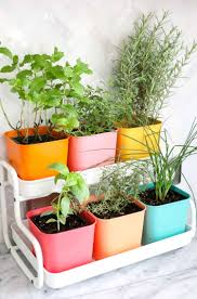 how to make an herb garden. Brilliant Herb MakeaColorfulIndoorHerbGardenclickthrough In How To Make An Herb Garden N