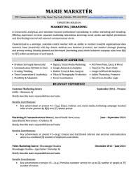 government resume keywords sales manager resume example free