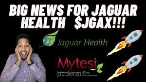 Since then, jagx shares have increased by 222.2% and is now trading at $1.45. Jagx Jaguar Health Just Did This Pharmacist Talks Pharma Penny Stocks Buy This Stock Youtube