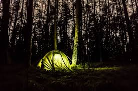 camping in the woods at night. Contemporary Woods Throughout Camping In The Woods At Night N