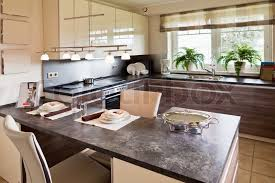 modern house interior. Modern House Interior I