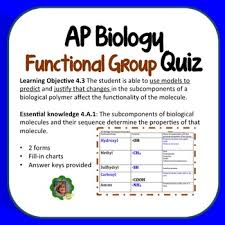 functional groups chart ap biology functional groups quiz by bio4u high school biology tpt