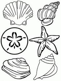 Small Picture Shark Coloring Page We learn Ocean Pinterest Shark