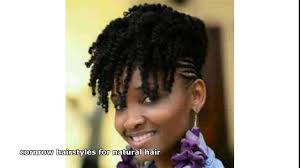 Natural Hair Braids Hairstyles