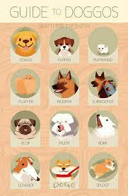 Guide To Doggos Shattered Earthcom Pupper Pupperino Doggo