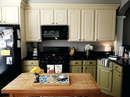 Different Color Kitchen Cabinets Bold Color Verointernationalclub