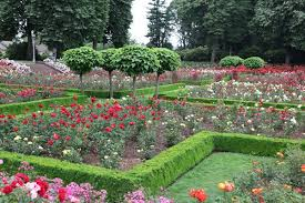 How to grow a rose garden   Period Living likewise The English Rose Garden   YouTube moreover 65 best Rose Garden images on Pinterest   Flowers  Plants and besides 334 best Розы images on Pinterest   Climbing roses  David austin furthermore 76 best rose garden images on Pinterest   Flower gardening besides 131 best cutting garden images on Pinterest   Flowers  Gardens and further Top Rose Garden Design Ideas Home Design Wonderfull Interior likewise 51 best My Rose garden images on Pinterest   Flowers  Climbing moreover  besides Top 25  best Roses garden ideas on Pinterest   Growing roses further Rose Garden Free Stock Photo   Public Domain Pictures. on design a rose garden