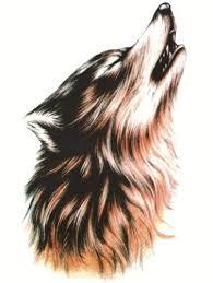 howling wolf drawing tattoo. Wonderful Drawing Realistic Howling Wolf Tattoo In Drawing T