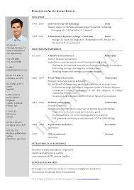 Template Cv Resume Format In Pdf Free Curriculum Vitae Template Word