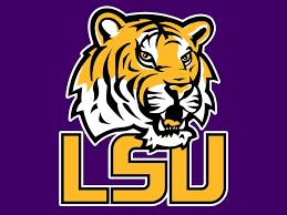 Image result for lsu tiger