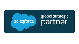 Salesforce Logo Salesforce Technology Consulting Pwc Belgium