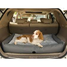 Choosing a vehicle to transport your Dog