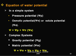 Water Potential Equation Plant Water Relations