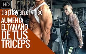 los 4 mejores ejercicios para aumentar masa muscular en los tríceps you