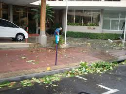 Cyclone Yasi Cairns