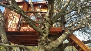 kids tree house for sale. Backyard Treehouse For Kids - Tree Houses Sale. House Sale E