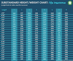 Life Insurance For Overweight Obese People Bmi Rates
