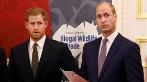 Prince Harry & Prince William Have Always Been 'Competitive' | Mom.com