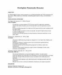 Vista Volunteer Sample Resume