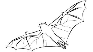 Bat Coloring Pages Rouge The Bat Coloring Pages Bat Coloring Sheet