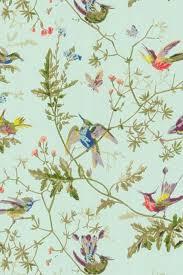 Cole & Son Hummingbird. Bird Wallpaper ...